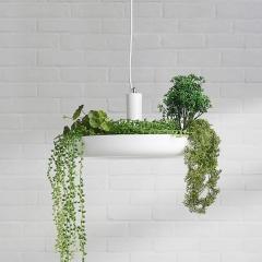 Hanging Garden Plant Pendant Light