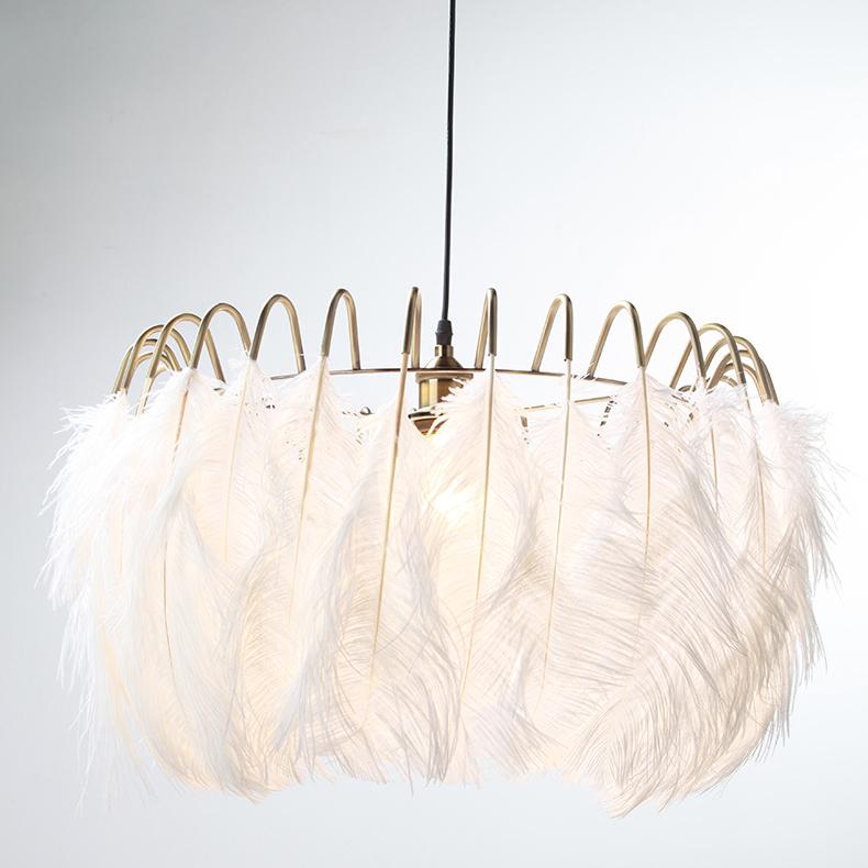 Northern Lighting 1 Light Feather Peandant Chandelier in Brass