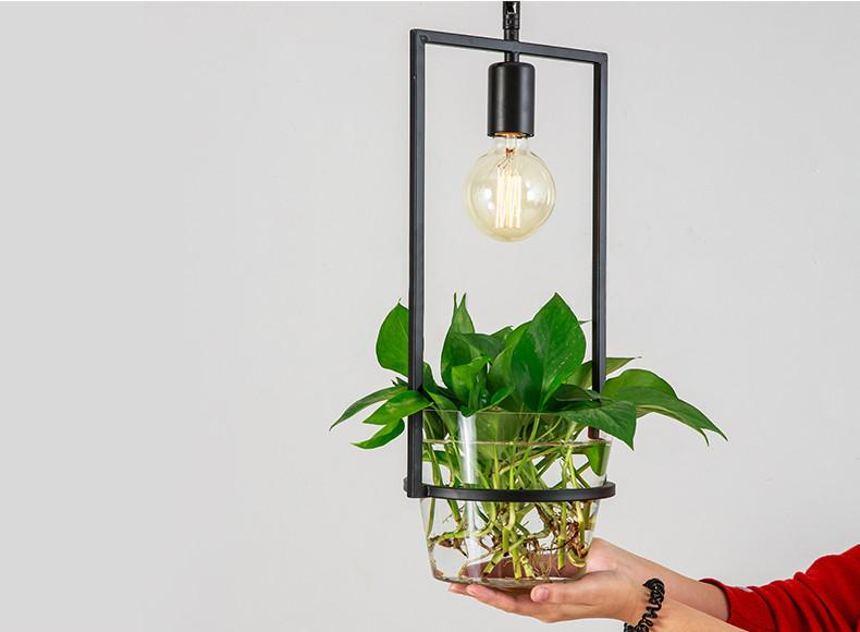 Hanging Plant Box Frame Pendant Light