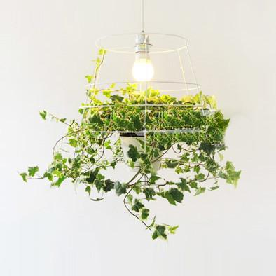Hanging Plant Cage Pendant Light